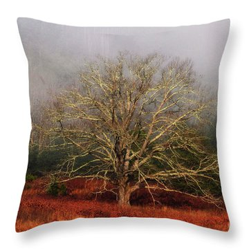 Fog Tree Throw Pillow