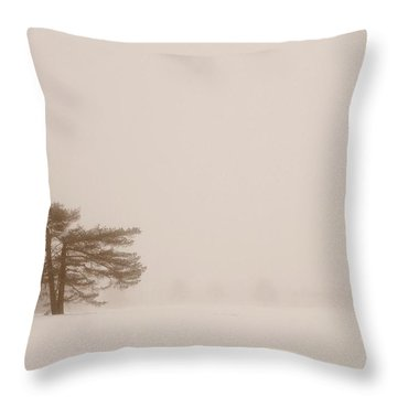Fogged In Throw Pillow by Jill Laudenslager