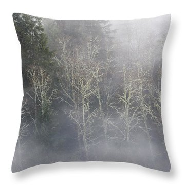 Foggy Alders In The Forest Throw Pillow