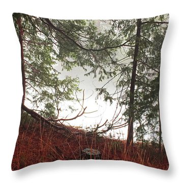 Throw Pillow featuring the photograph Foggy Autumn Morning by Walter Fahmy