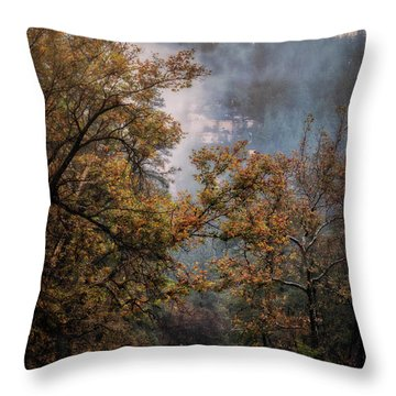Throw Pillow featuring the photograph Foggy Autumn Road  by Saija Lehtonen