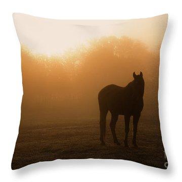 Foggy Dawn Throw Pillow