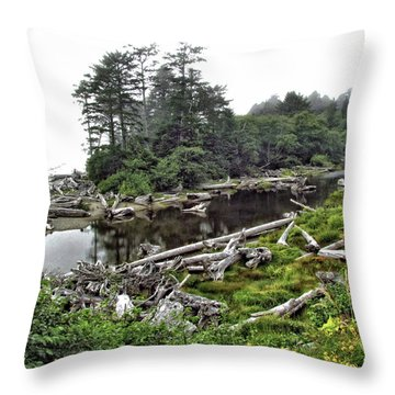 Washington Driftwood Beach Fog Throw Pillows