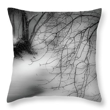 Throw Pillow featuring the photograph Foggy Feeder by Kendall McKernon