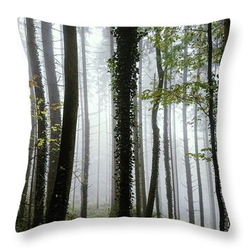 Throw Pillow featuring the photograph Foggy Forest by Chevy Fleet