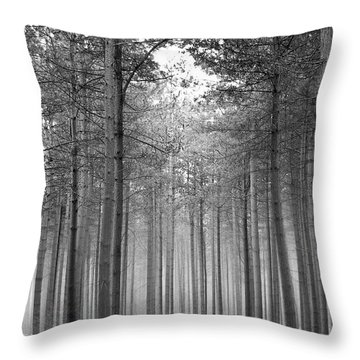 Foggy Forest Throw Pillow by Svetlana Sewell