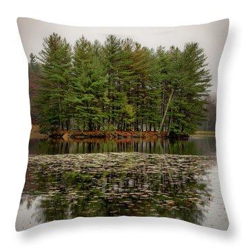 Foggy Island Reflections Throw Pillow