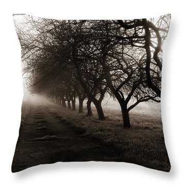 Foggy Lane Throw Pillow