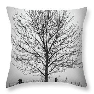 Foggy Lone Tree Hill Fine Art Throw Pillow