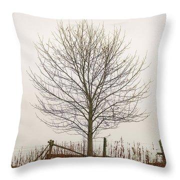 Foggy Lone Tree Hill Throw Pillow