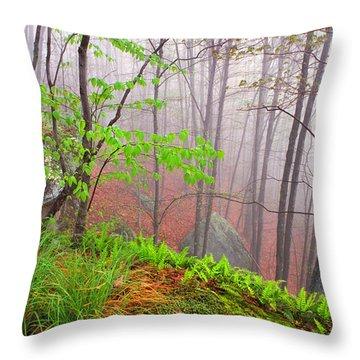 Foggy Misty Spring Morning Throw Pillow by Thomas R Fletcher