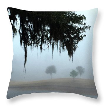 Foggy Morn Reflections Throw Pillow