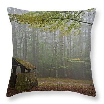Foggy Morning At Droop Mountain Throw Pillow