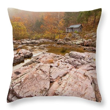 Foggy Morning At Klepzig Mill Throw Pillow