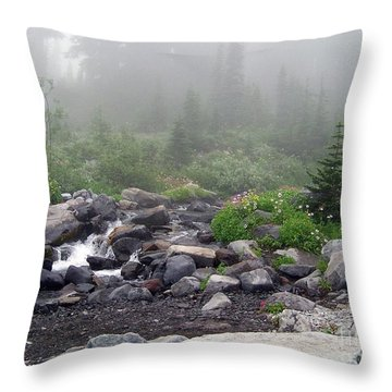 Throw Pillow featuring the photograph Foggy Morning At Paradise by Charles Robinson