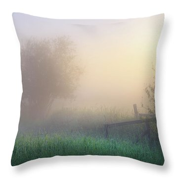 Foggy Morning Throw Pillow by Dan Jurak