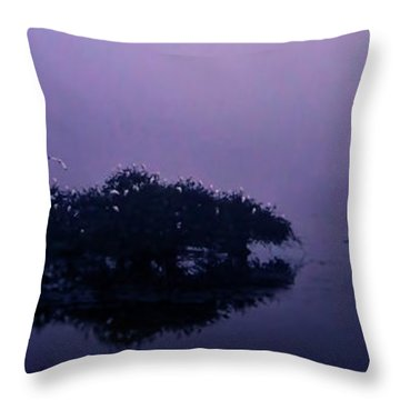 Throw Pillow featuring the photograph Foggy Morning by Don Durfee