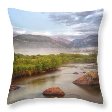 Foggy Morning In Moraine Park Throw Pillow