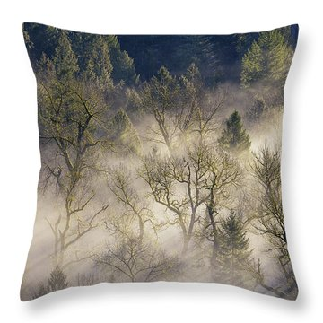 Foggy Morning In Sandy River Valley Throw Pillow by David Gn