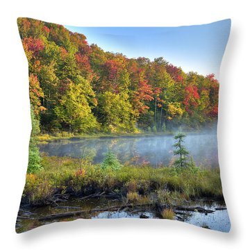 Throw Pillow featuring the photograph Foggy Morning On The Pond by David Patterson