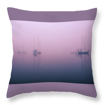Throw Pillow featuring the photograph Foggy Morning On The  Sassafras River by Richard Goldman