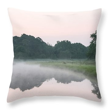 Foggy Morning Reflections Throw Pillow by Allan Levin