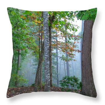 Foggy Morning Throw Pillow by Rosie Brown