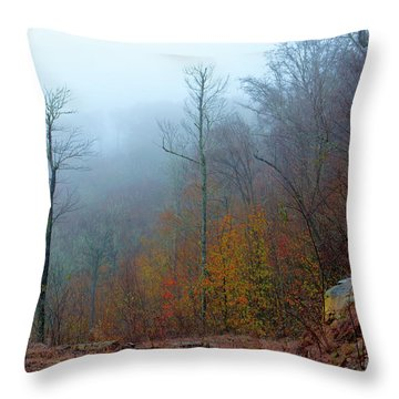 Foggy Nature Throw Pillow