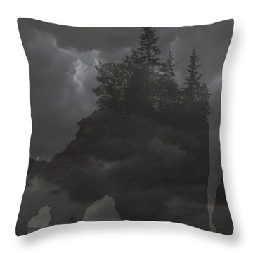 Foggy Night Throw Pillow by Will Burlingham