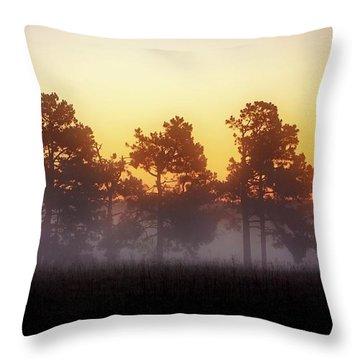 Foggy Ozark Morning  Throw Pillow
