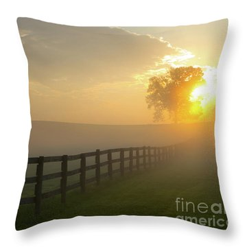 Foggy Pasture Sunrise Throw Pillow