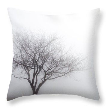 Foggy Picnic Throw Pillow