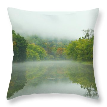 Foggy Reflections Throw Pillow by Karol Livote