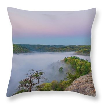Foggy Valley Throw Pillow by Ulrich Burkhalter