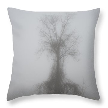 Foggy Walnut Throw Pillow