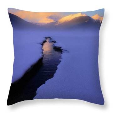Foggy Winter Days In Banff Throw Pillow