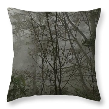 Foggy Woods Photo  Throw Pillow by Gina O'Brien