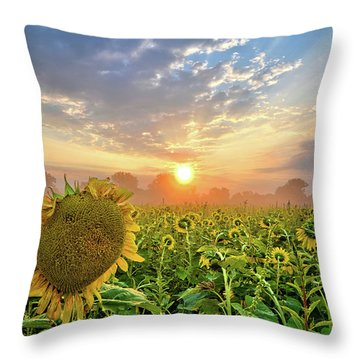 Foggy Yellow Fields Throw Pillow