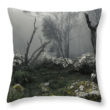 Fogscape Throw Pillow by Andrew Paranavitana