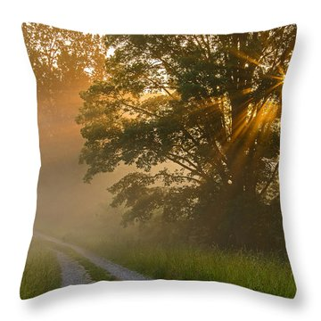 Fogy Summer Morning Throw Pillow
