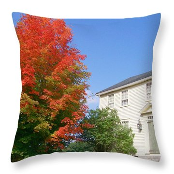 Foliage Peak Throw Pillow