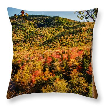 Foliage View From Crawford Notch Road Throw Pillow