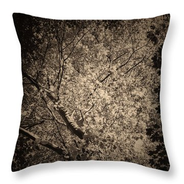 Foliage Throw Pillow by Wim Lanclus