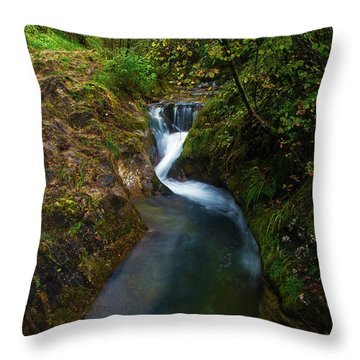 Throw Pillow featuring the photograph Follow It I by Yuri Santin