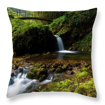Throw Pillow featuring the photograph Follow It II by Yuri Santin