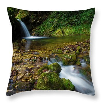 Throw Pillow featuring the photograph Follow It by Yuri Santin