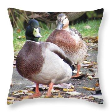 Quack..quack, Follow Me And I Follow You Later. Throw Pillow