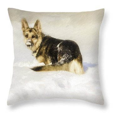 Follow Me Throw Pillow