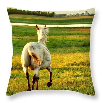 Follow My Lead Throw Pillow