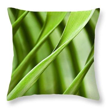 Follow My Lead Throw Pillow by Carolyn Marshall